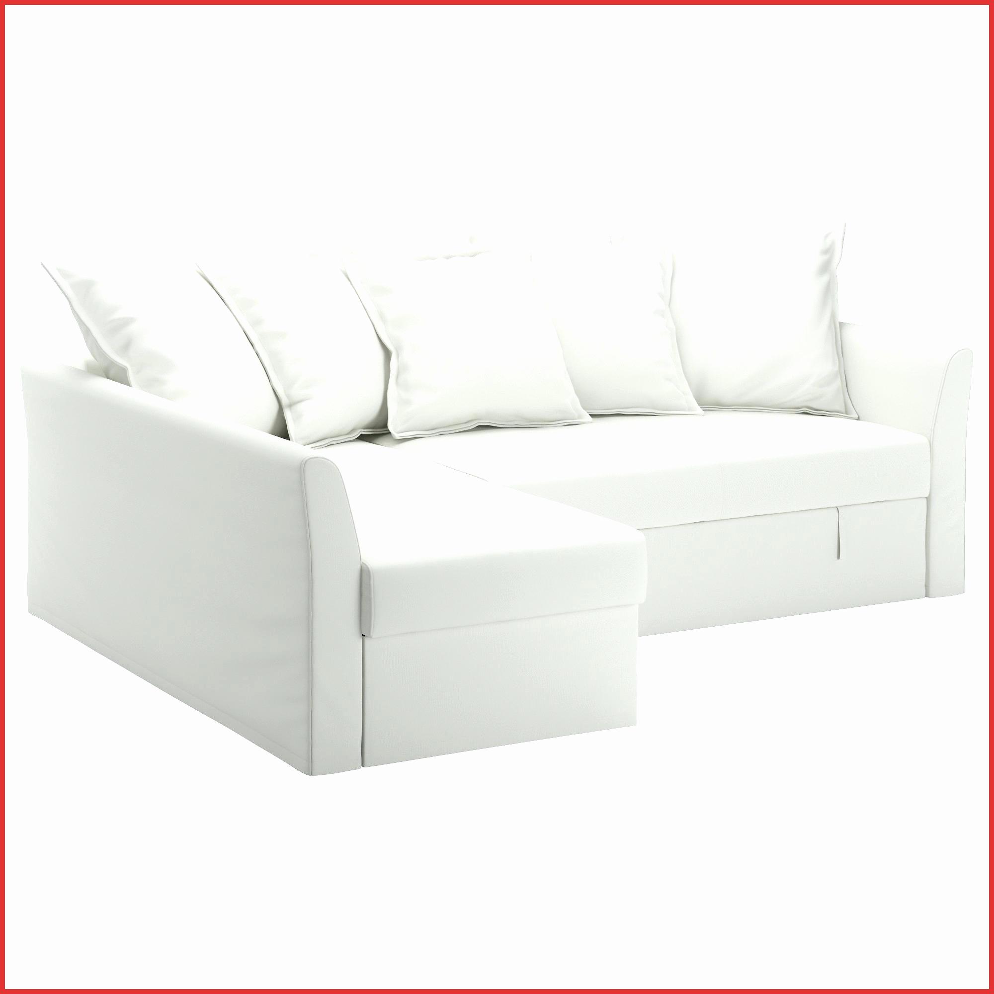 Housse Pour Bz Ikea Luxe Galerie Canape Convertible Bz Meilleur De Housse Canape Bz Frais Canape