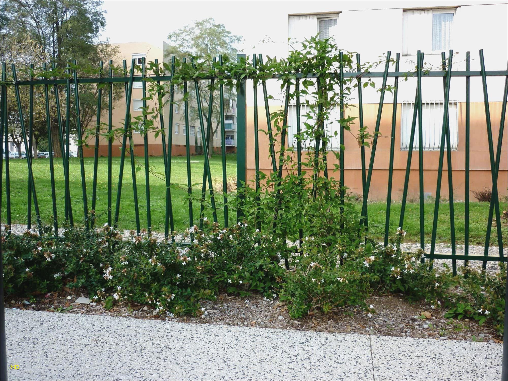 Idee Deco Interieur Cabane En Bois Beau Stock Inspirant Cabanon De Jardin En Bois