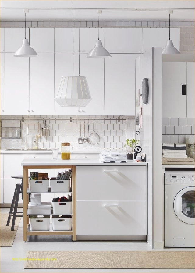 Ikea Cuisine Ringhult Luxe Photographie Dernier Cuisine Ringhult Gris Meilleur De Meilleur Ikea Cuisine