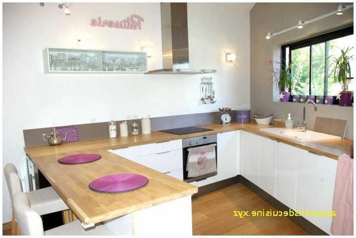 Interieur Maison De Luxe Cuisine Meilleur De Photographie 20 Luxe Equipement Cuisine Opinion Tpoutine