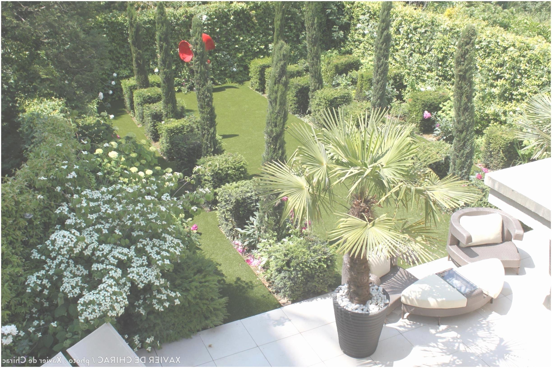 Jardin De Luxe Moderne Unique Collection 19 Frais Mon Jardin Ma Maison Clintonvillearts