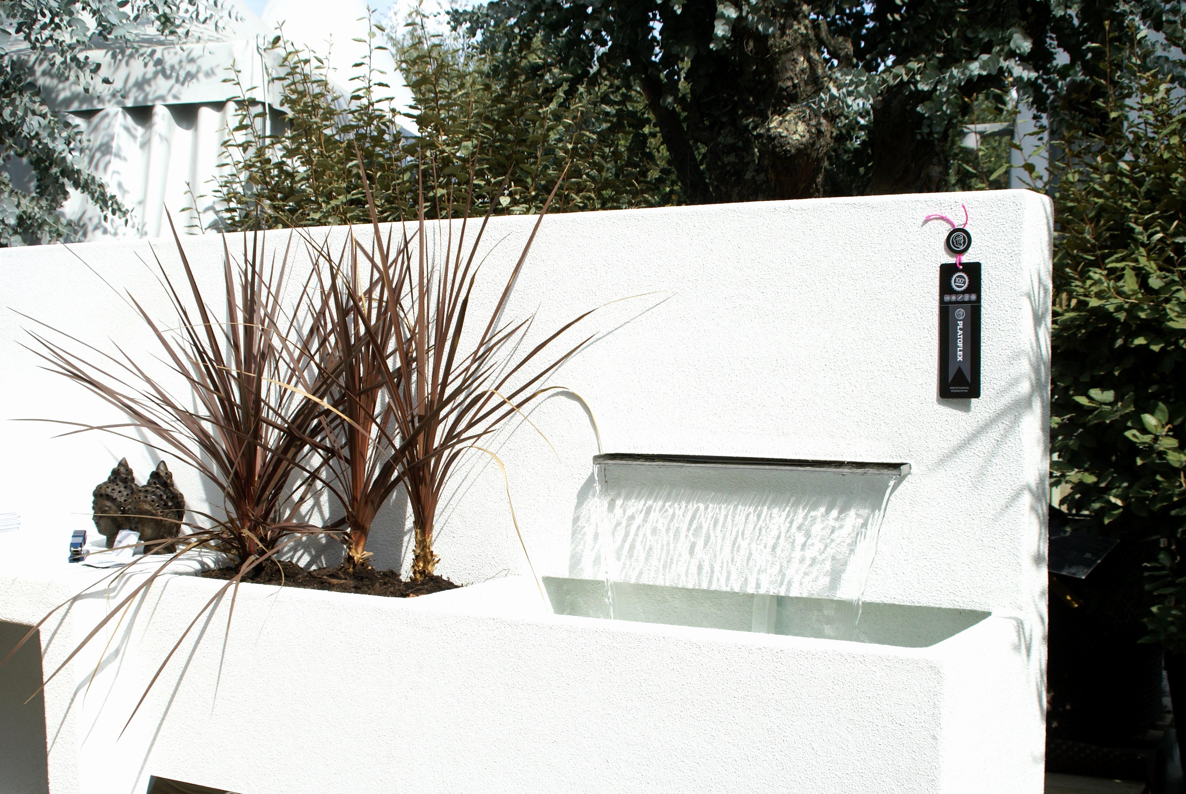 Jardin Moderne Bambou Unique Images 27 Meilleur De Abonnement Maison ...