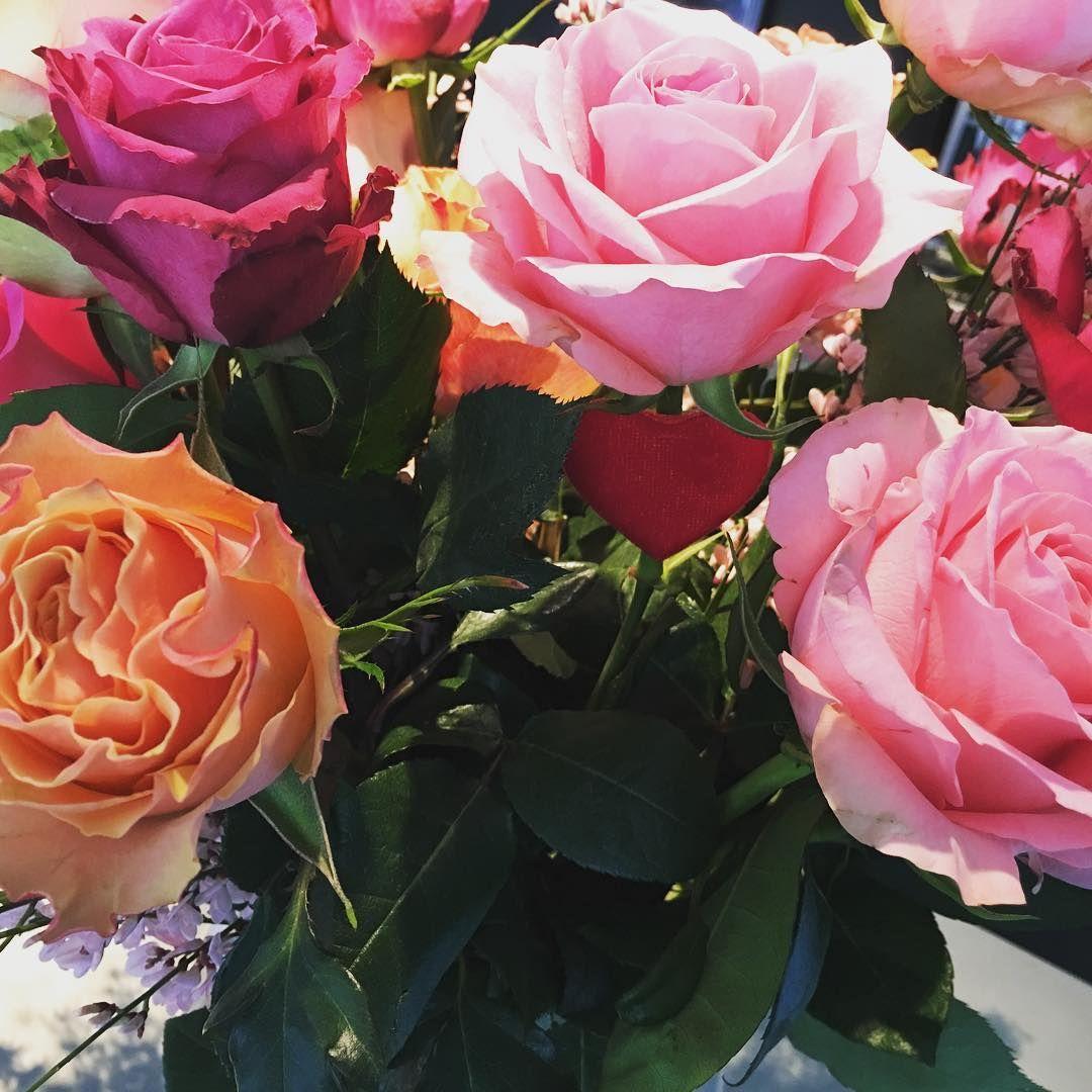 Jardin Secret Cannes Beau Photos Instagram Flori Pinterest