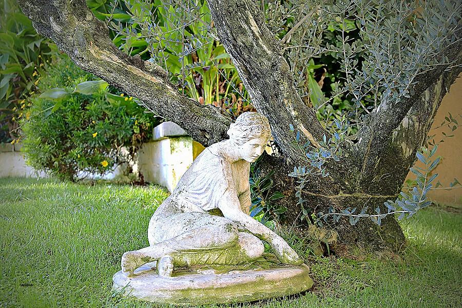Jardin Zen Amberieu Élégant Collection Stunning Jardin Zen Design Joshkrajcik Joshkrajcik