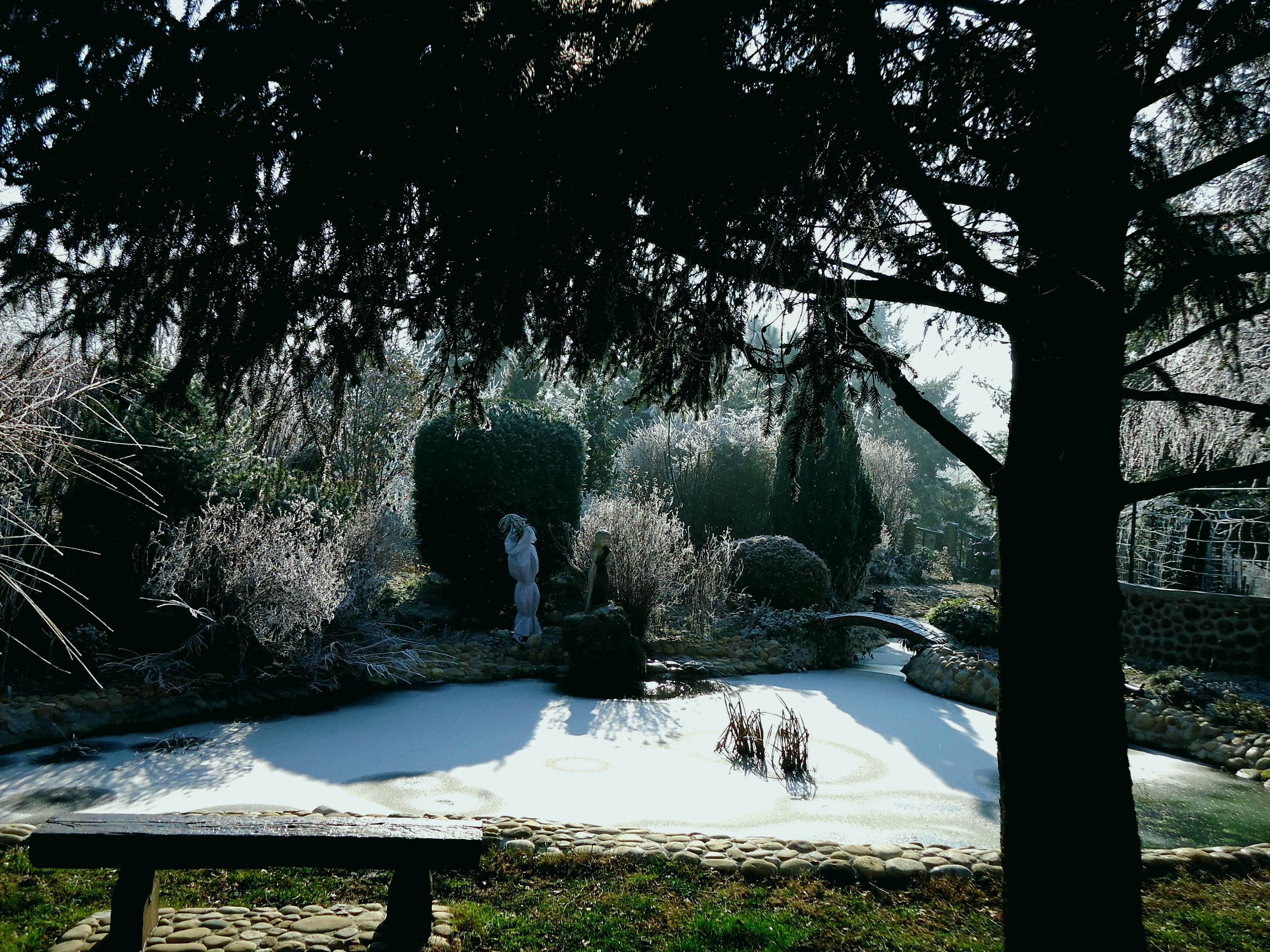Jardin Zen Amberieu Inspirant Photographie Jardin Zen