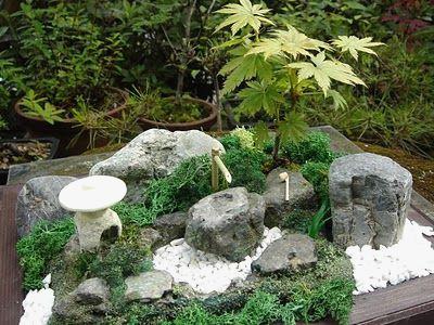 Jardin Zen Miniature Jardiland Luxe Image Creer Un Jardin Japonais Miniature Monlinkerds Maison