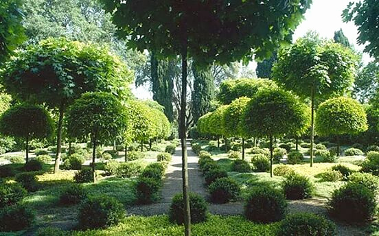Jardin Zen Wallpaper Élégant Photos Deco Bassin De Jardin Beau Jardin A Visiter Lovely Creation Jardin