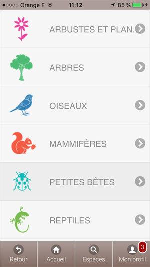 Jeux solitaire Gralon Meilleur De Image Ecobalade Dans L App Store