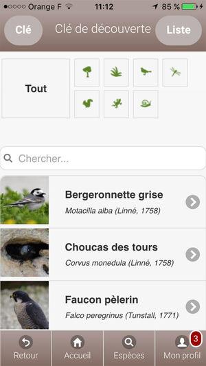 Jeux solitaire Gralon Nouveau Images Ecobalade Dans L App Store