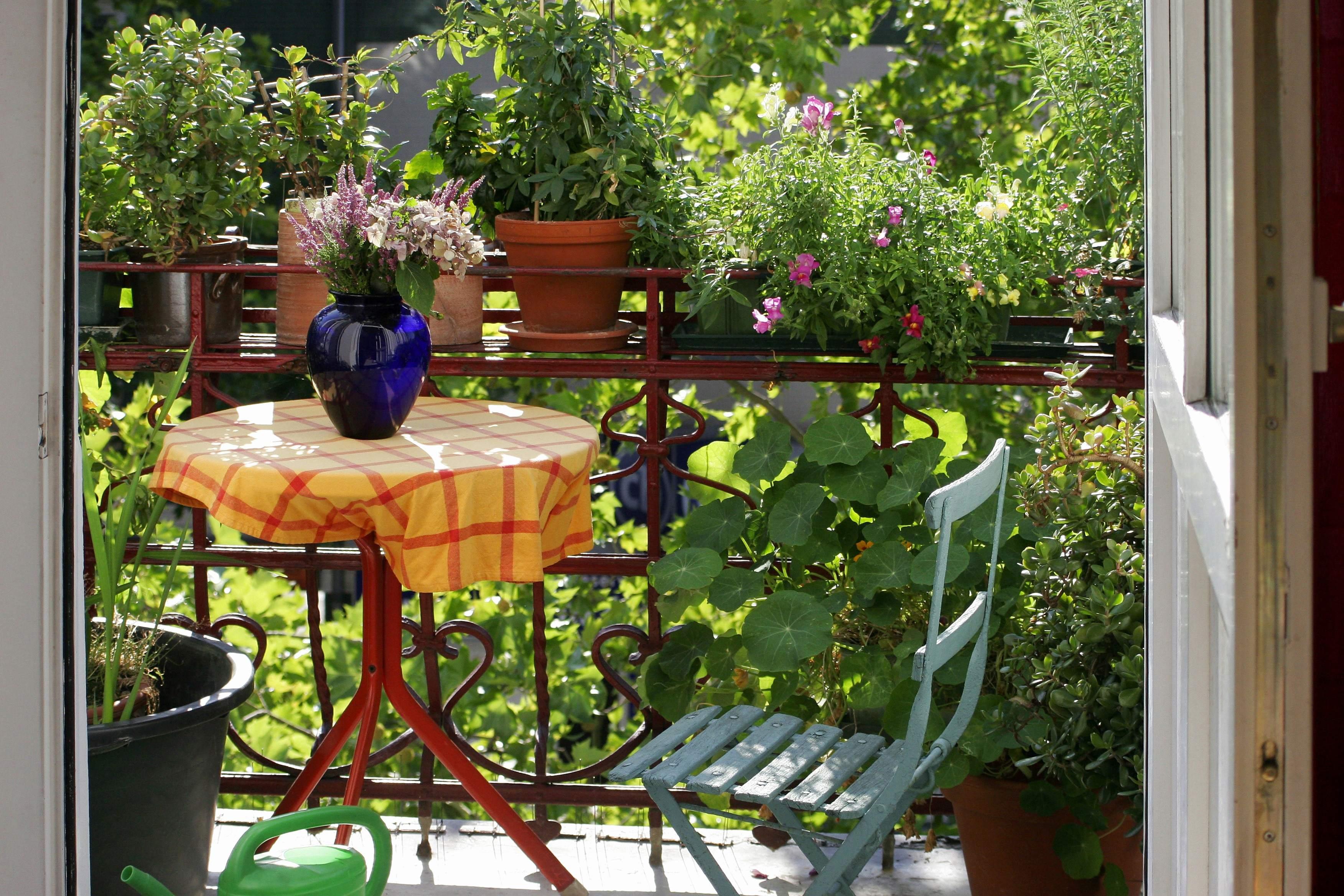 Le Jardin Des Sens Hennebont Beau Images 13 Magnifique Jardin Des Sens Hennebont Galerie De Cuisine Jardin