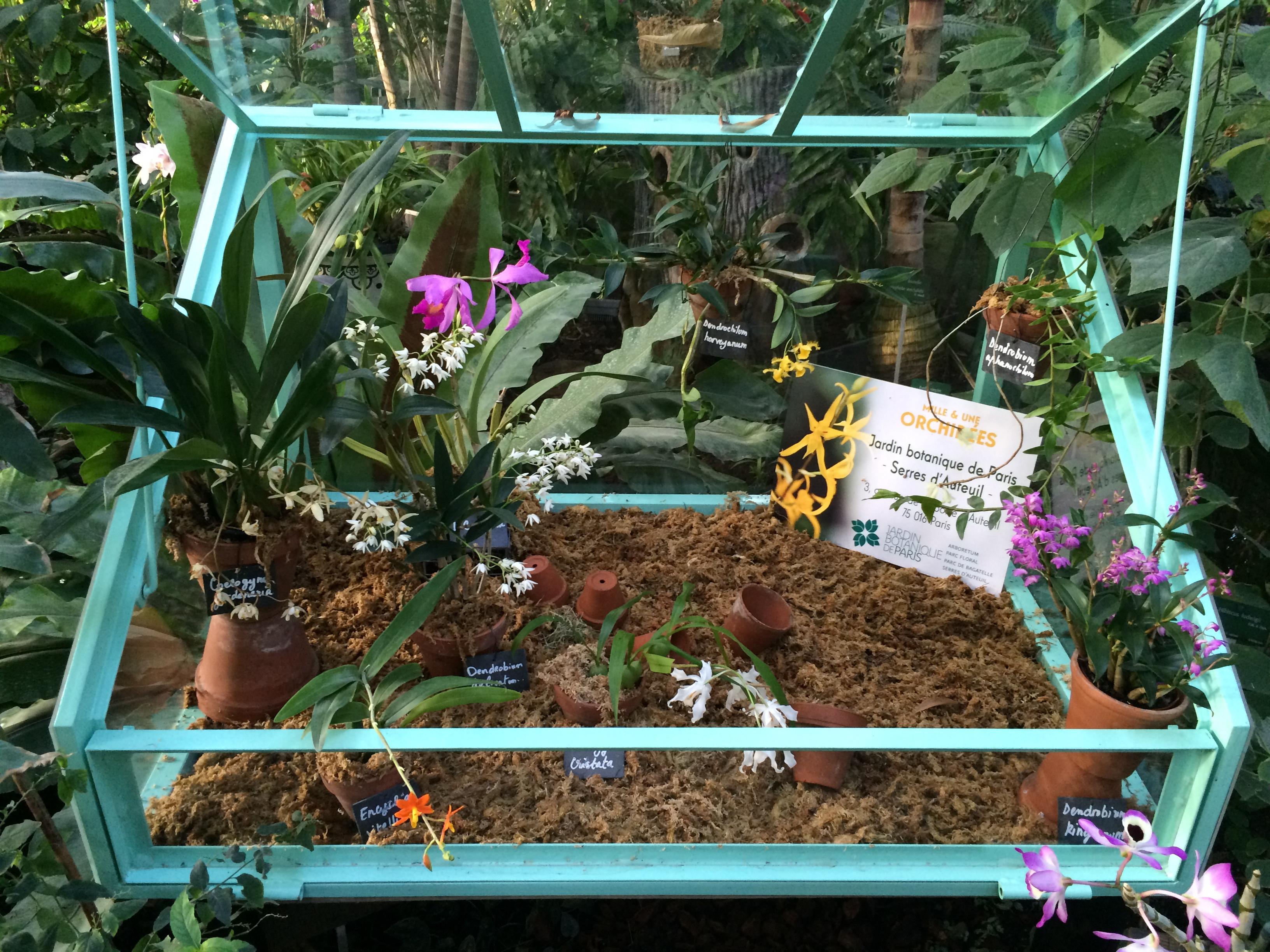 Le Jardin Des Sens Hennebont Élégant Photos Le Jardin Des Sens De Finest Mille Et Une Floraisons Au Jardin Des