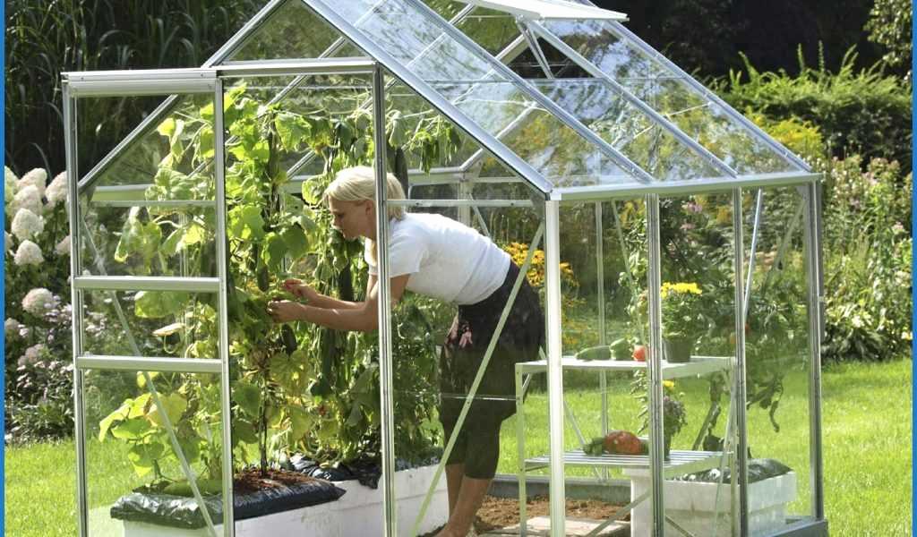 Leroy Merlin Serre De Jardin Frais Stock Bache Pour Serre De Jardin Nouveau Leroy Merlin Serre De Jardin
