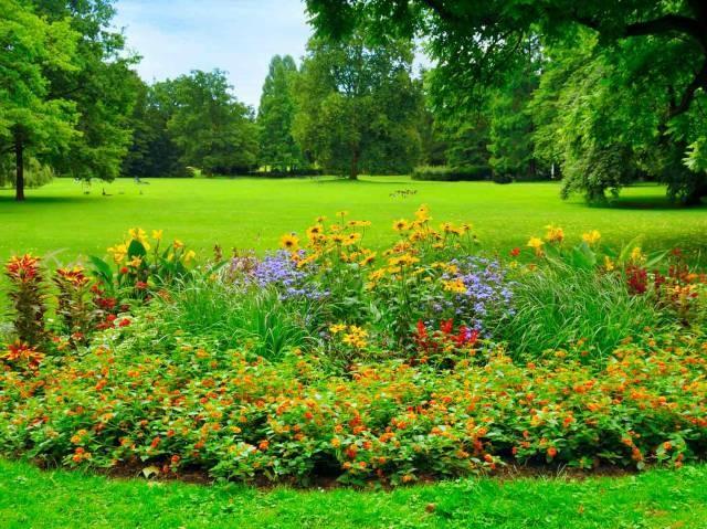 Leroy Merlin Serre De Jardin Nouveau Photos Leroy Merlin Serre De Jardin Nouveau 20 Meilleur De Abri De Jardin