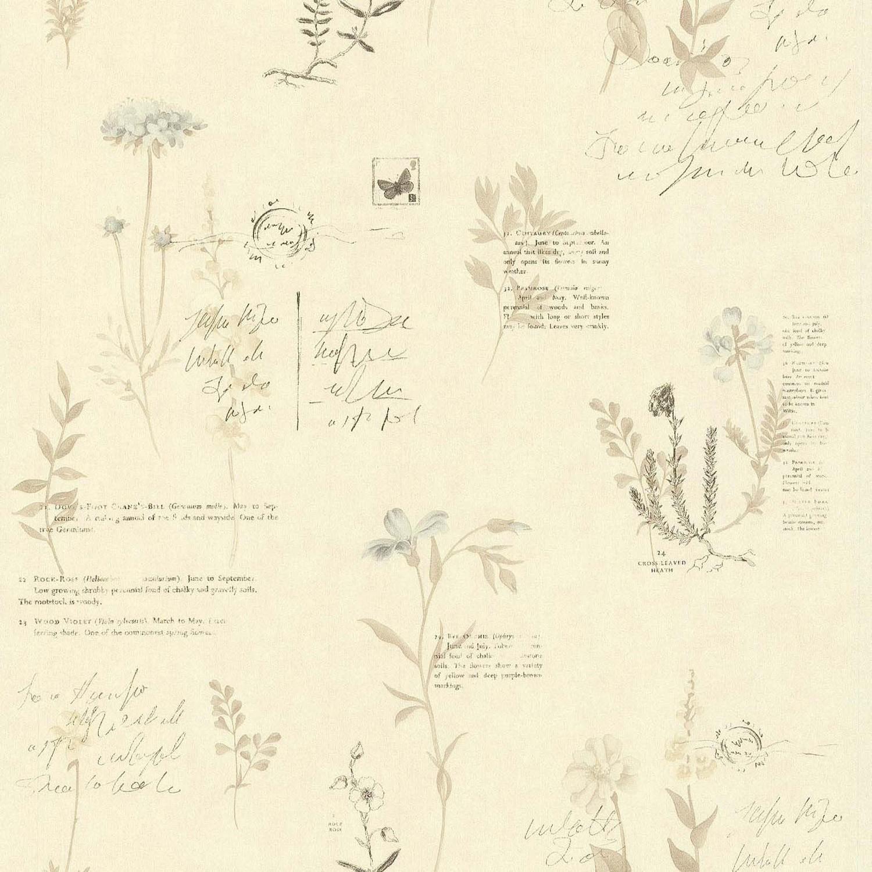 Livre La Cuisine Bruleuse De Graisse Frais Photos Papier Peint Botanique Beige Papier Cuisine Et Bain