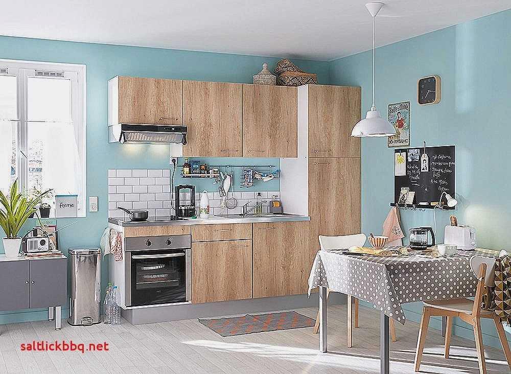 Meuble Cuisine Fait Maison Élégant Photos Element Cuisine Ikea Beau Meubles Cuisine Meuble Cuisine Bleu Frais