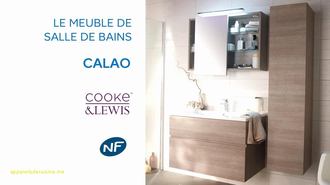Meubles Salle De Bains Castorama Élégant Image Meuble Miroir Salle De Bain Castorama Résultat Supérieur Meuble Et