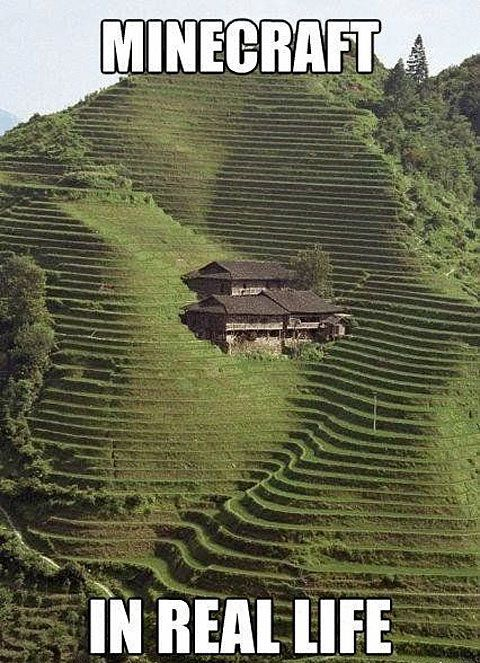 Minecraft Jardin Japonais Inspirant Image the Real Minecraft… Pinterest