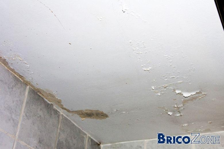 Moisissures Plafond Salle De Bain Beau Images Inspirant Moisissure Plafond Salle De Bain Sweettater