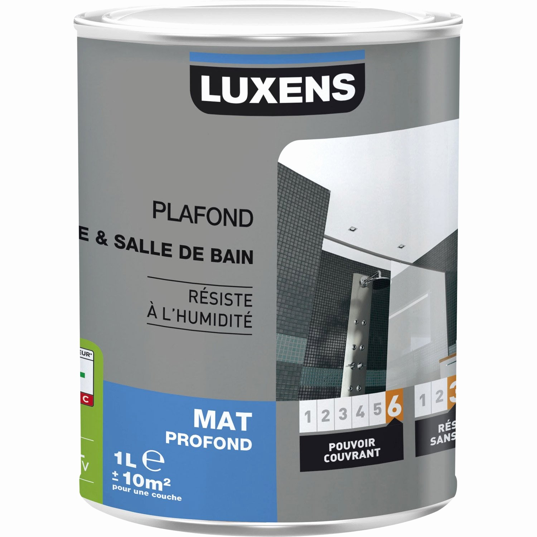 Moisissures Plafond Salle De Bain Beau Stock Quelle Peinture Pour Plafond 57 Meilleur De Image De Quelle