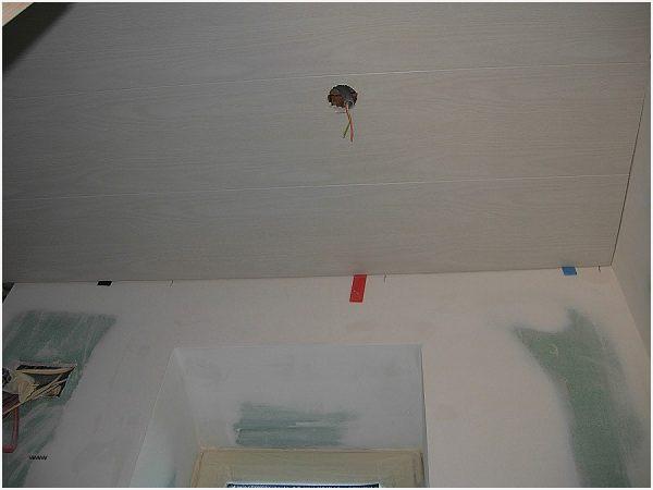 Moisissures Plafond Salle De Bain Meilleur De Images Moisissure Plafond Salle De Bain Bonne Qualité Platinum Diagnostic Lab