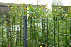 Panneau Treillis Bois Castorama Luxe Photos Treillis Droit Naturel 120 X 180cm