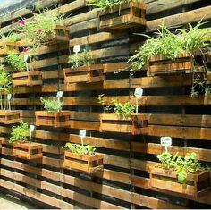 Panneau Treillis Bois Castorama Meilleur De Photos Choisissez Un Panneau Occultant De Jardin Pinterest