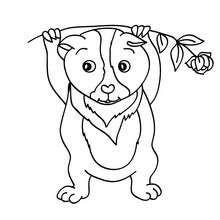 Peppa Pig Imprimer Inspirant Stock Coloriage D Un Guinea Pig Healthy Pinterest