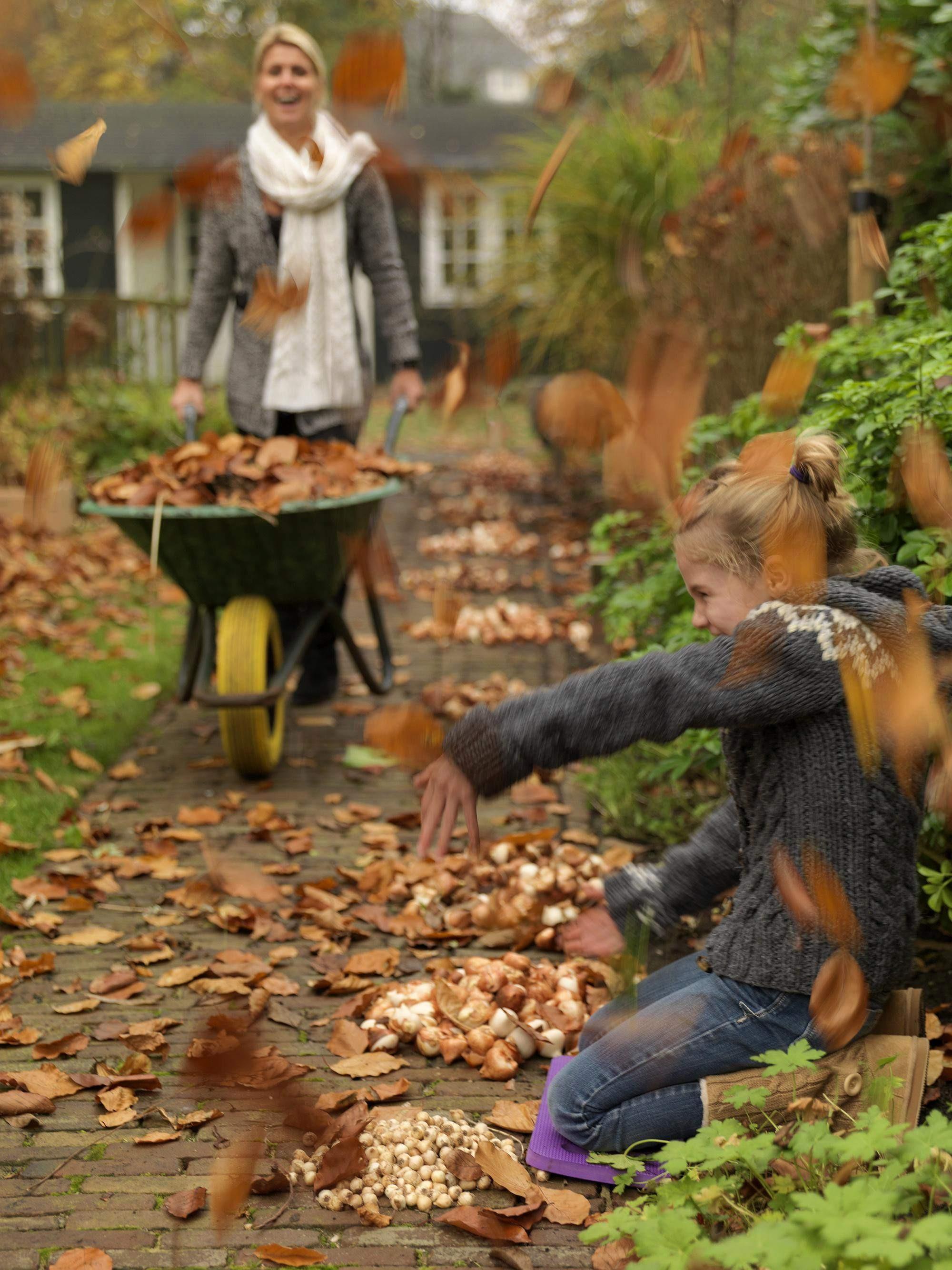 Plume Dans La Cuisine Inspirant Galerie 12 Luxe Le Jardin De L Olivier Cuisine Et Jardin Cuisine Et Jardin