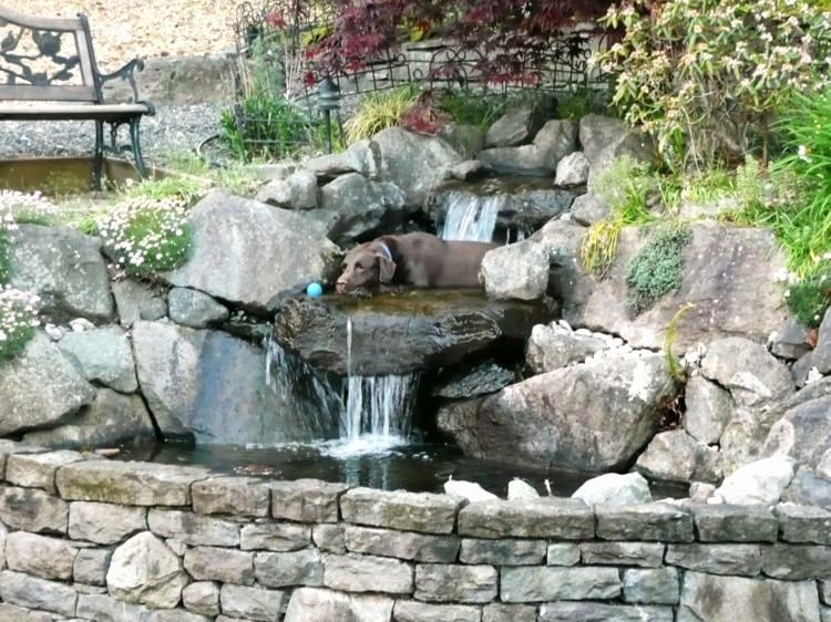 Pompe Fontaine Castorama Impressionnant Images Pompe Jardin Nouveau Pompe De Jardin Lovely Pompe A Eau De Jardin