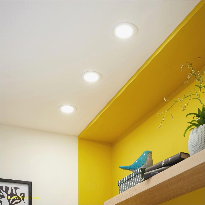 Poulailler Leroy Merlin Meilleur De Photos Lampes solaires Jardin Dessin Du C´té De La Pays – Sullivanmaxx