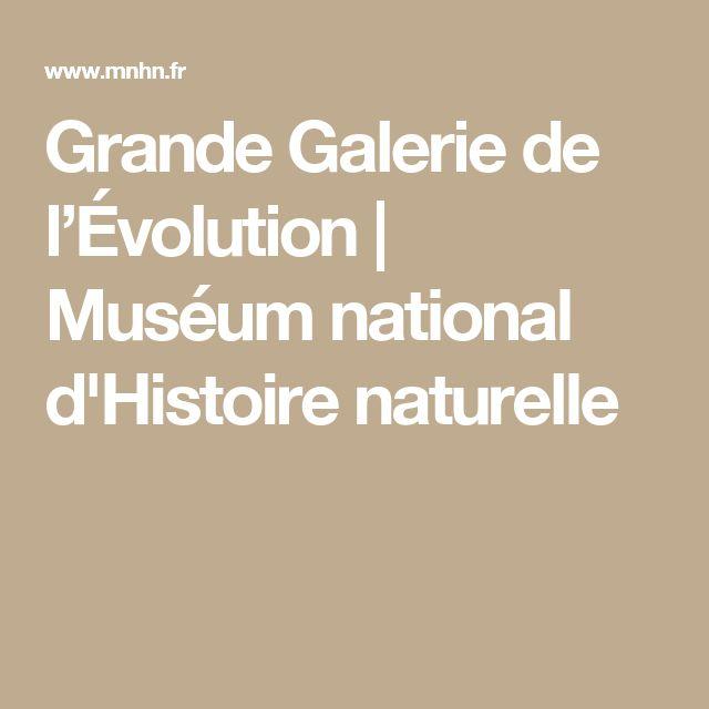 Serre De Gally Sartrouville Élégant Galerie Les 15 Meilleures Images Du Tableau sortie Avec Les Enfants Sur