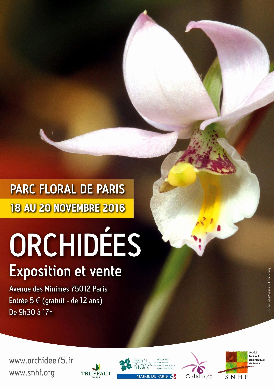 Serre De Gally Sartrouville Frais Photos 14 Nouveau Serre De Jardin Amazon Galerie De Cuisine Jardin