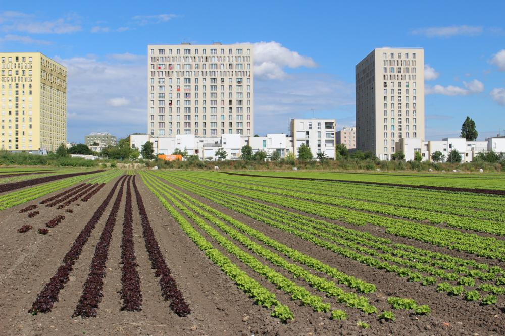 Serre De Gally Sartrouville Frais Stock Carte Agriculture Urbaine Idf