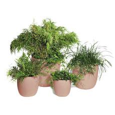 Tablier De Jardinier Gamm Vert Unique Photos Pot Et Cache Pot Pas Cher Plantation Jardin Aushopping