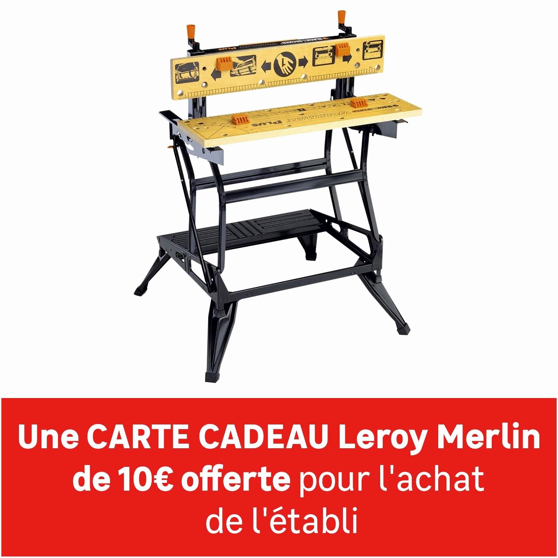 Tete De Robinet Leroy Merlin Impressionnant Photographie Leroy Merlin Activation Carte Cadeau Unique Carte Cadeau Illicado