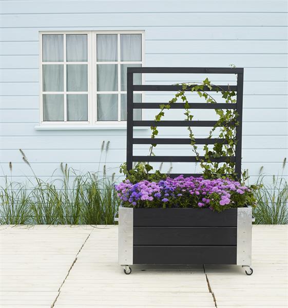 Treillage Bois Pour Plantes Grimpantes Castorama Beau Images Jardiniere Avec Treillis Bois Affordable Charmant Jardiniere Avec