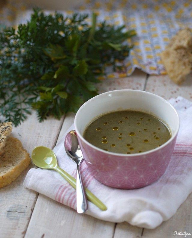 Veloute Fanes De Carottes thermomix Inspirant Stock soupe De Fanes De Carottes Et Céleri Rave Pinterest