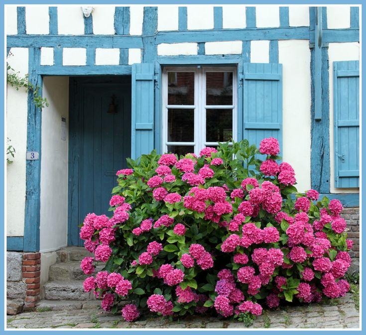 Vive Le Jardin Granville Beau Photos Les 22 Meilleures Images Du Tableau norman Sur Pinterest