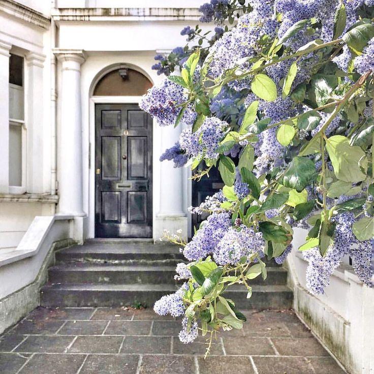 Vive Le Jardin Granville Inspirant Photographie Les 20 Meilleures Images Du Tableau Granville Sur Pinterest