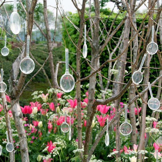 Vive Le Jardin Granville Luxe Photographie Les 11 Meilleures Images Du Tableau Through the Looking Glass Sur