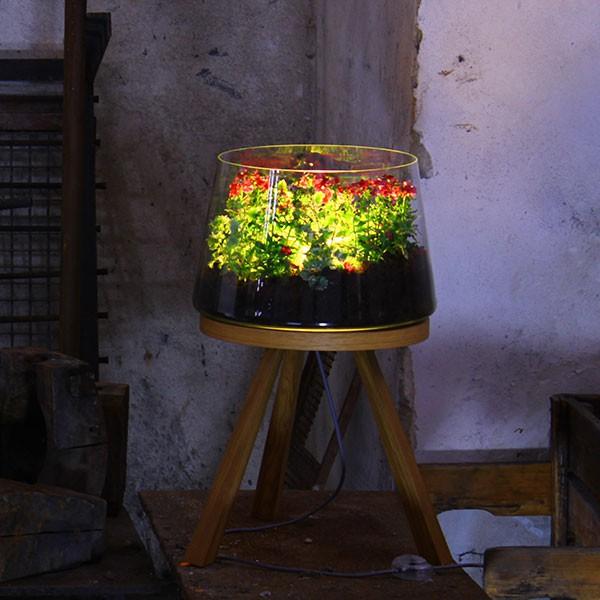 Voile D Ombrage Botanic Beau Images Lampe Botanique Planta Medium Jardinchic