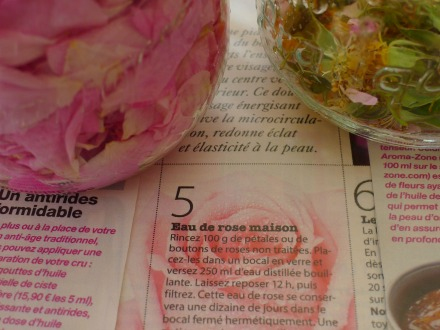 Voile D Ombrage Botanic Inspirant Galerie Les Rªves De Mys Le Jardin De Mys