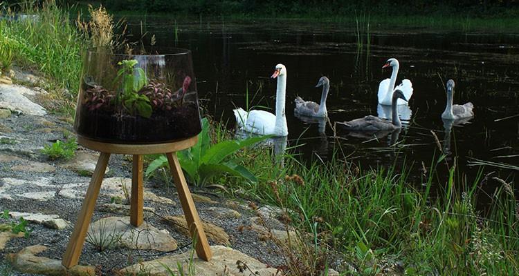 Voile D Ombrage Botanic Luxe Image Lampe Botanique Planta Medium Jardinchic