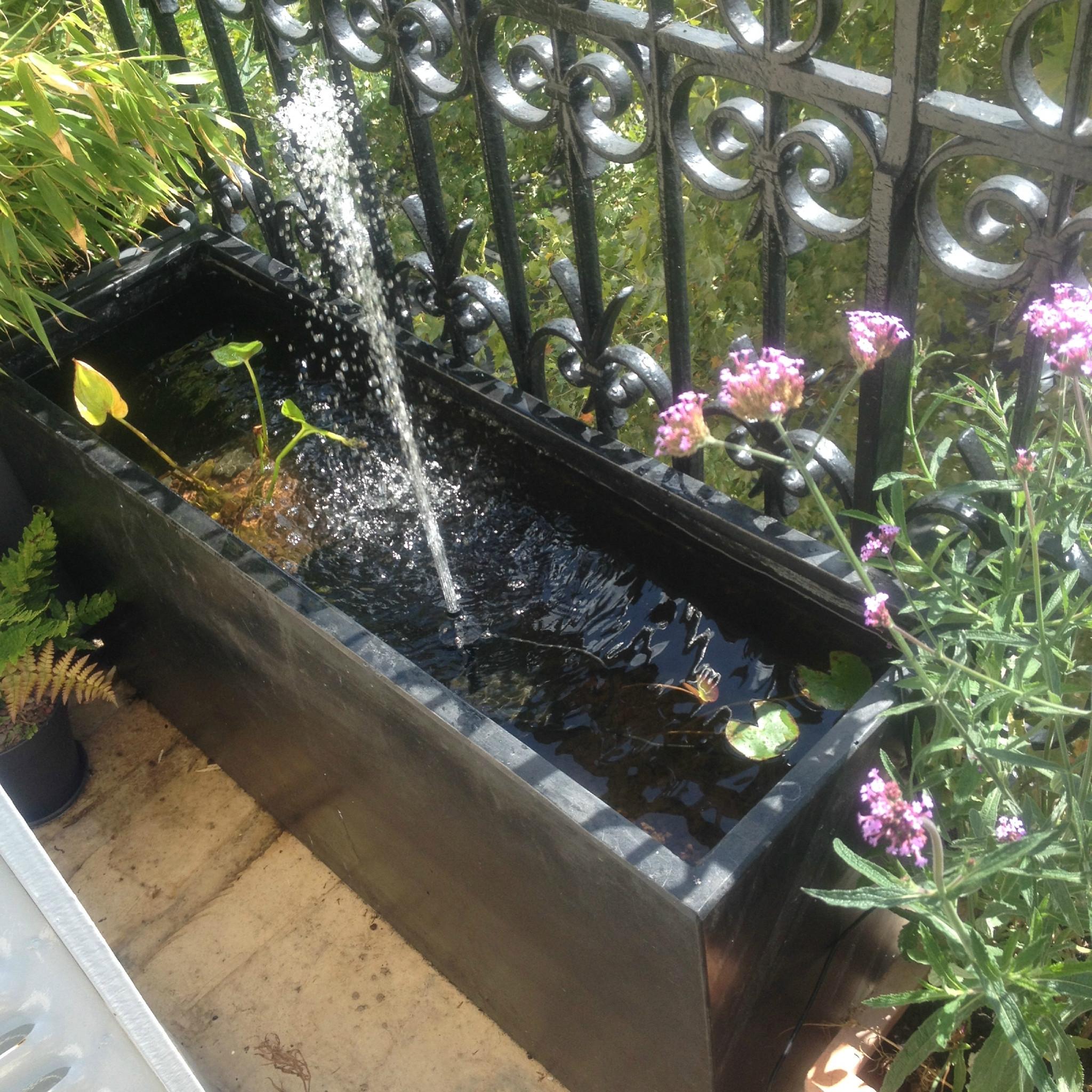 Voile Hivernage Botanic Beau Collection Etourdissant Hivernage Bassin Exterieur Idée En Les Famille