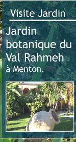 Voile Hivernage Botanic Élégant Image Magazine Petit Jardin N°67 Mars 2012 Jardinage Plantes Et Fleurs