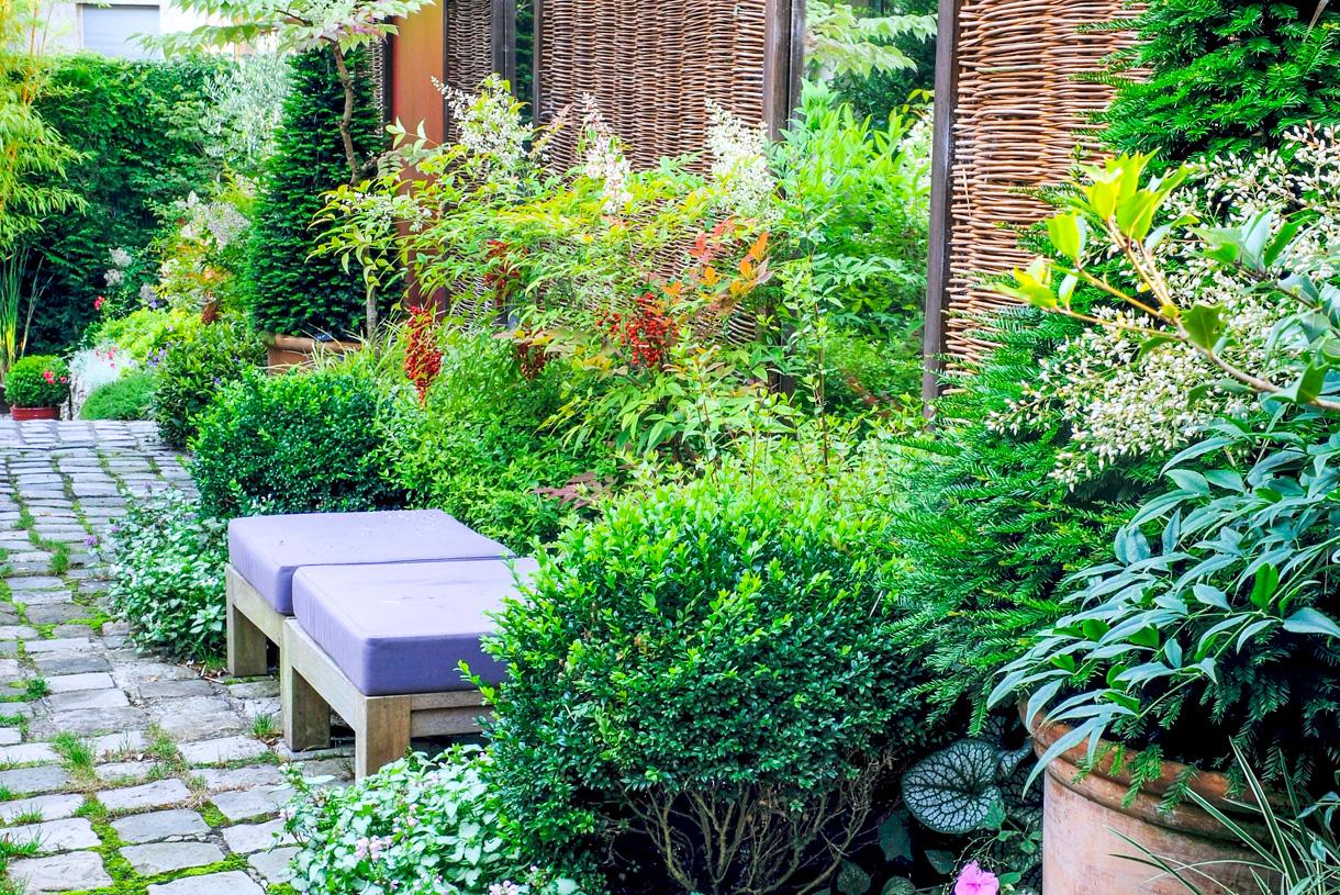 Voile Hivernage Botanic Élégant Photos Entejardin