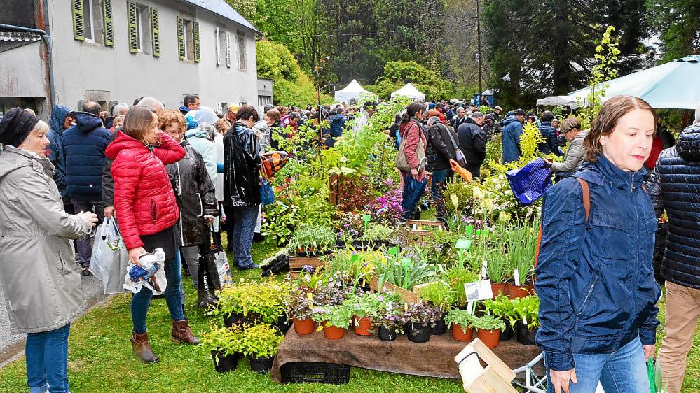 Voile Hivernage Botanic Impressionnant Photos Google Actualités Arrosage Les Plus Récents