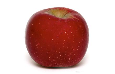 Voile Hivernage Botanic Luxe Stock Ment Bien Choisir Mes Pommes Botanic