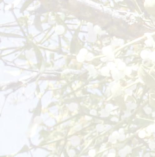 Voile Hivernage Botanic Unique Photographie La Sibérie Les 4 Saisons Pr¨s De Chez Vous Pdf