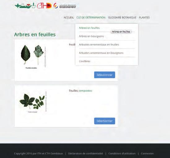 Voile Hivernage Botanic Unique Stock La Sibérie Les 4 Saisons Pr¨s De Chez Vous Pdf
